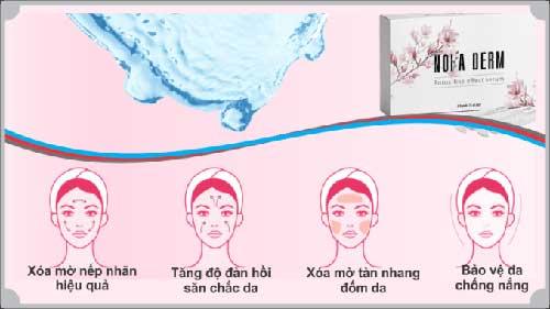 tác dụng của Serum Noia Derm