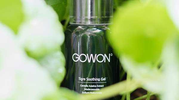 Tìm hiểu về Gowon Tigre Soothing Gel