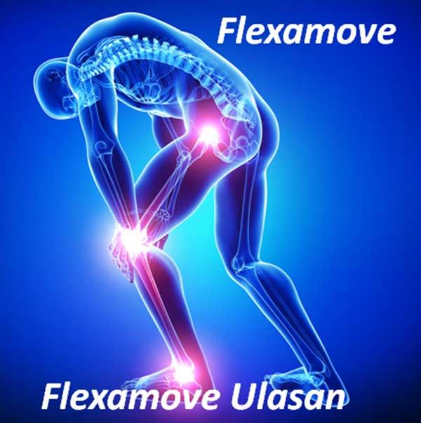 Điều trị xương khớp flexamove