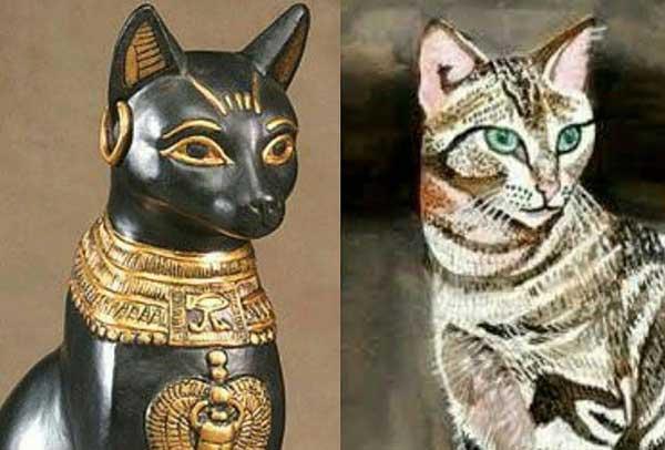 Mèo trong ai cập cổ đại