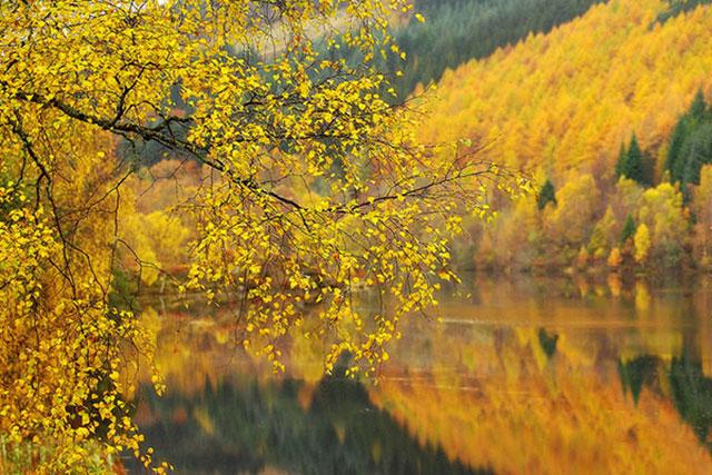 Hình ảnh đẹp cho mùa thu