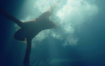 [Review] Đánh giá phim Trùng quỷ đại dương ( Sea Fever 2020)