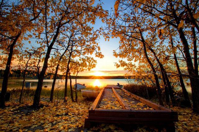 Phong cảnh mùa thu đẹp