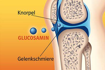 glucosamine-la-chat-long-xung-quanh-khop