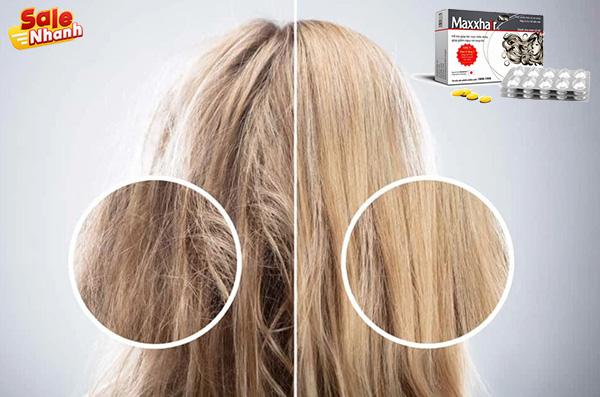 Cải thiện tóc xơ rối